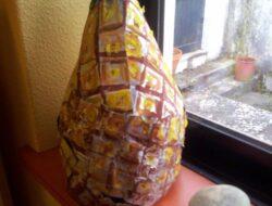 Ananás finalizado