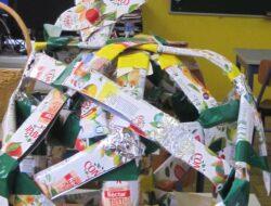 Mais do que fazer um projeto artístico , este trabalho pretendeu ,chamar mais uma vez a atenção, de alunos e comunidade educativa para dois temas muito importantes - Uma alimentação saudável e a reutilização de embalagens.