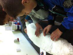 Aplicação da pasta de papel - papel e cola branca.