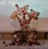 Um sobreiro Compal na planície  alentejana! O nosso desafio! O resultado final do nosso trabalho , um sobreiro Compal em plena planicie alentejana com as suas bolotas diferentes.